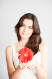 Beautiful girl with red flower Stock Photos