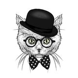 A beautiful cat with a hat and tie. Funny kitten. Vector illustration. Stock Photography