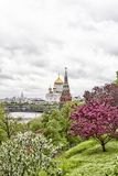 Beautiful Cathedral of Christ the Savior Royalty Free Stock Photography