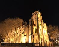 A beautiful cathedral in the light. A cathedral looks especially beautiful under the unique light. And the trees around the architecture looks like magic royalty free stock photos
