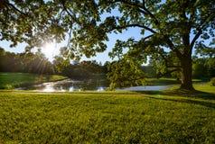Beautiful Catherine Park. Pushkin. Russia Royalty Free Stock Image