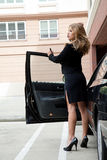 Beautiful caucasian twenties woman Royalty Free Stock Image