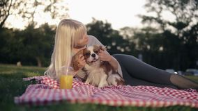 Beautiful caucasian blonde woman with her dogs in park, relaxed on green grass on a litter - caress and cuddling her. Loving pet - cavalier king charles spaniel stock video