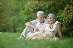 Beautiful caucasian elderly couple Royalty Free Stock Photos