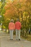 Beautiful caucasian elderly couple Royalty Free Stock Photography