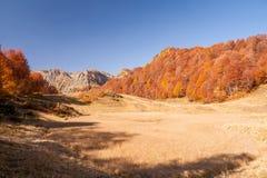 Beautiful Caucasian mountains in autumn Stock Image