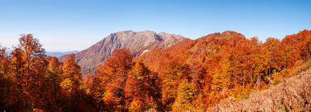 Beautiful Caucasian mountains in autumn Royalty Free Stock Images