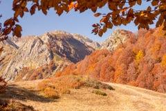 Beautiful Caucasian mountains in autumn Stock Photos