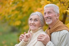 beautiful caucasian senior couple   in the park Royalty Free Stock Photography