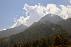 Beautiful Caucasus mountains with rich forests Stock Image