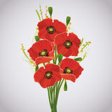 Beautiful celebratory bouquet of red poppies. For greeting or invitation card  on gray background. Vector illustration Stock Photos