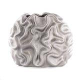 Beautiful ceramic vase on white background Royalty Free Stock Images