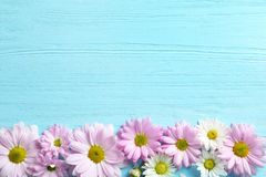 Beautiful chamomile flowers on wooden background stock photo