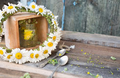 Beautiful chamomile wreath Stock Photo