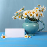 Beautiful chamomiles in a blue jug Royalty Free Stock Image