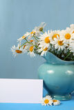 Beautiful chamomiles in a blue jug Royalty Free Stock Photos