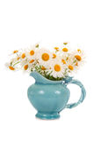 Beautiful chamomiles in a blue jug Stock Image