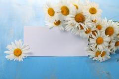 Beautiful chamomiles and greeting card Stock Photo