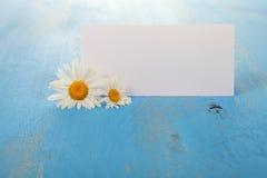 Beautiful chamomiles and greeting card Stock Photos