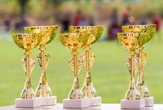 Beautiful champion golden trophy cups for winners in soccer comp Royalty Free Stock Images