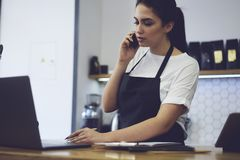 Young female owner calling to bank for checking finance documentation in cafeteria. Royalty Free Stock Photo