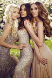 Beautiful charming girls in luxurious sequin dresses. Fashion outdoor photo of beautiful charming girls in luxurious sequin dresses posing in blossom spring stock photos