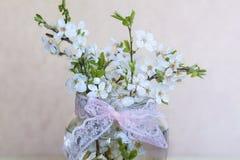Beautiful cherry twigs  in small decorative glass  vase Stock Photo