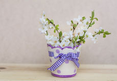 Beautiful cherry twigs  in small decorative vase Royalty Free Stock Images