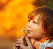 Beautiful child blowing away dandelion flower Royalty Free Stock Photography