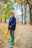 Beautiful child boy in the autumn nature stock photography