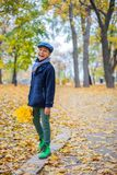 Beautiful child boy in the autumn nature stock images