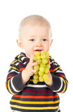 Beautiful child boy eating grapes Royalty Free Stock Image