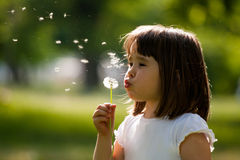 Beautiful child with dandelion flower in spring park. Happy kid having fun outdoors. Royalty Free Stock Images