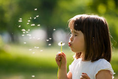 Beautiful child with dandelion flower in spring park. Happy kid having fun outdoors. Stock Photos