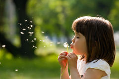 Beautiful child with dandelion flower in spring park. Happy kid having fun outdoors. Stock Photo