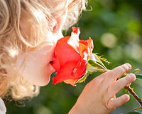 Beautiful child with flower Stock Photo