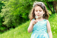 Beautiful child girl in park. Happy kid having fun outdoo. Beautiful child girl with dandelion flower in spring park. Happy kid having fun outdoors Royalty Free Stock Photography