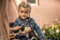 Beautiful child kid girl holding pet kitten concept animals care. Beautiful cute child kid girl holding pet kitten concept animals care Royalty Free Stock Images