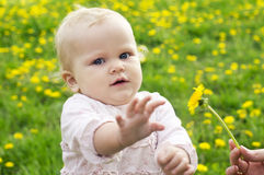 Beautiful child on the nature Stock Photos