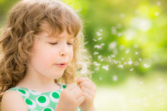 Beautiful child in spring Stock Photography