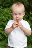 Beautiful child in summer garden Royalty Free Stock Photo