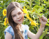Beautiful child with sunflower Stock Image