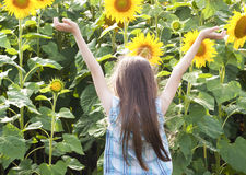 Beautiful child with sunflower Stock Images