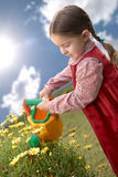 Beautiful child watering a daisy plant. Beautiful little girl watering a daisy plant in the yard with a watering can toy Royalty Free Stock Photo