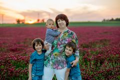 Beautiful children and their grandmother in gorgeous crimson clo. Ver field on sunset, springtime Royalty Free Stock Photo