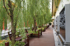 Beautiful chinese garden. In Udon Thani,Thailand Stock Photos