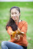 Beautiful Chinese girl picking yellow leaf Royalty Free Stock Photography