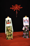 Beautiful Chinese or Japanese clothing at the Festival of the Orient in Rome Italy Stock Images