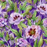 Beautiful Chinese peony with green leaves on bright purple background. Seamless floral pattern. Watercolor painting. Hand drawn and painted illustration vector illustration