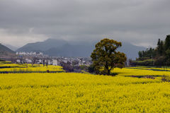 Beautiful Chinese rural landscape Royalty Free Stock Photos